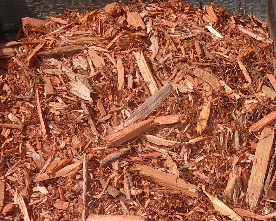 Mulch and Shell